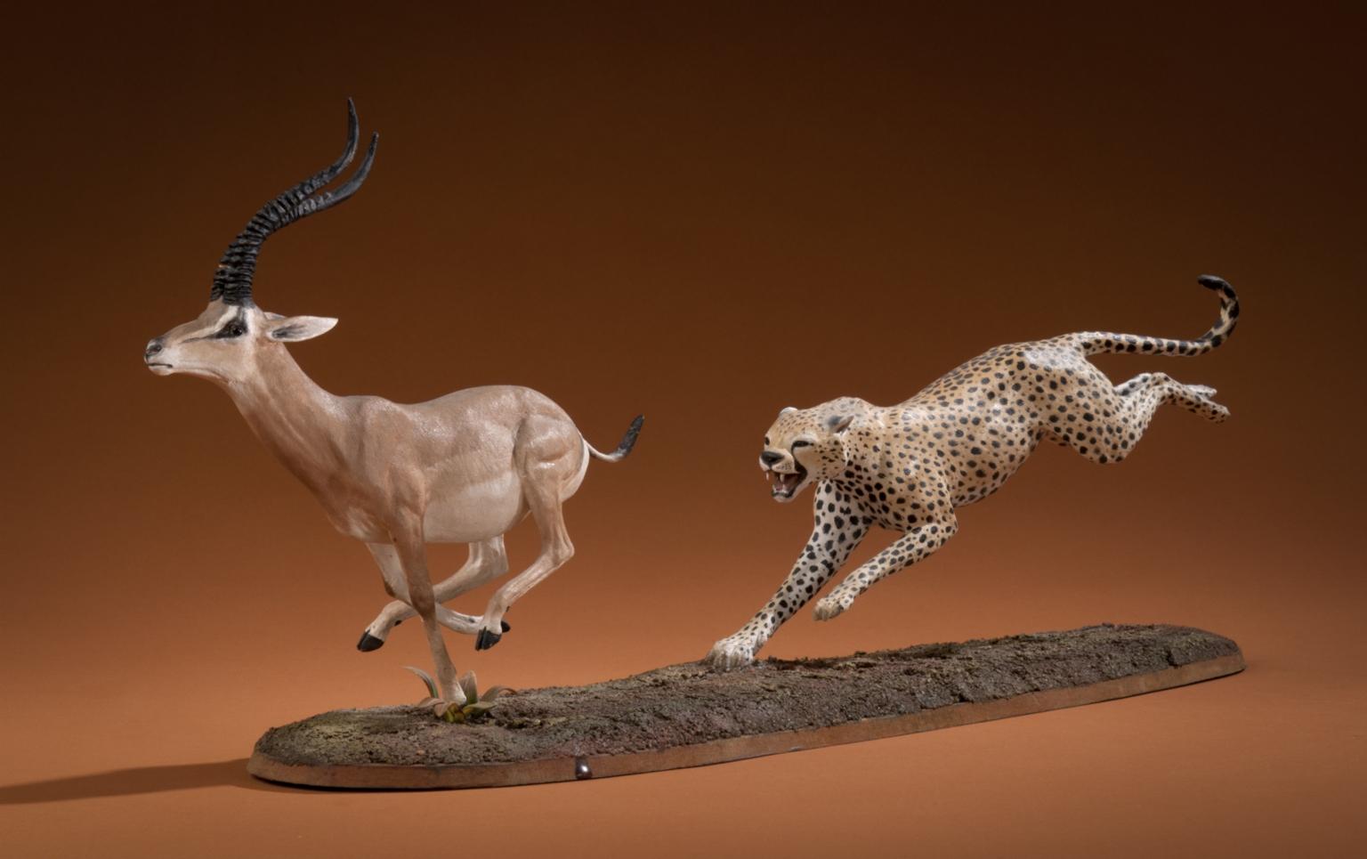 Cheetah and Grant's Gazelle
