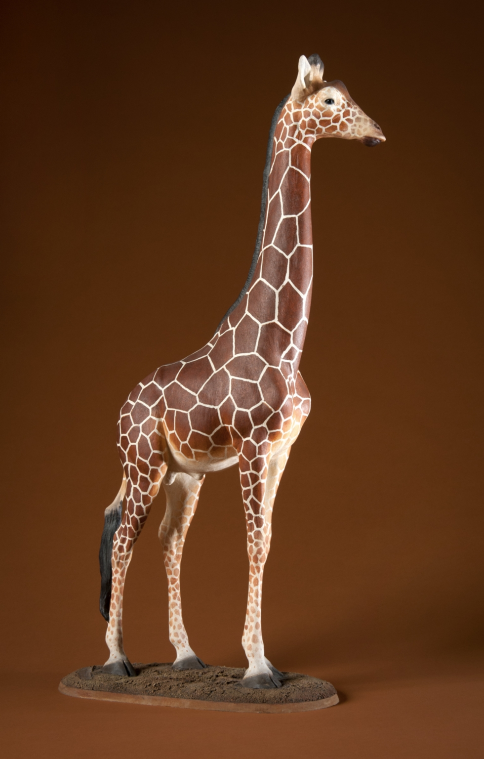 Reitculated Giraffe