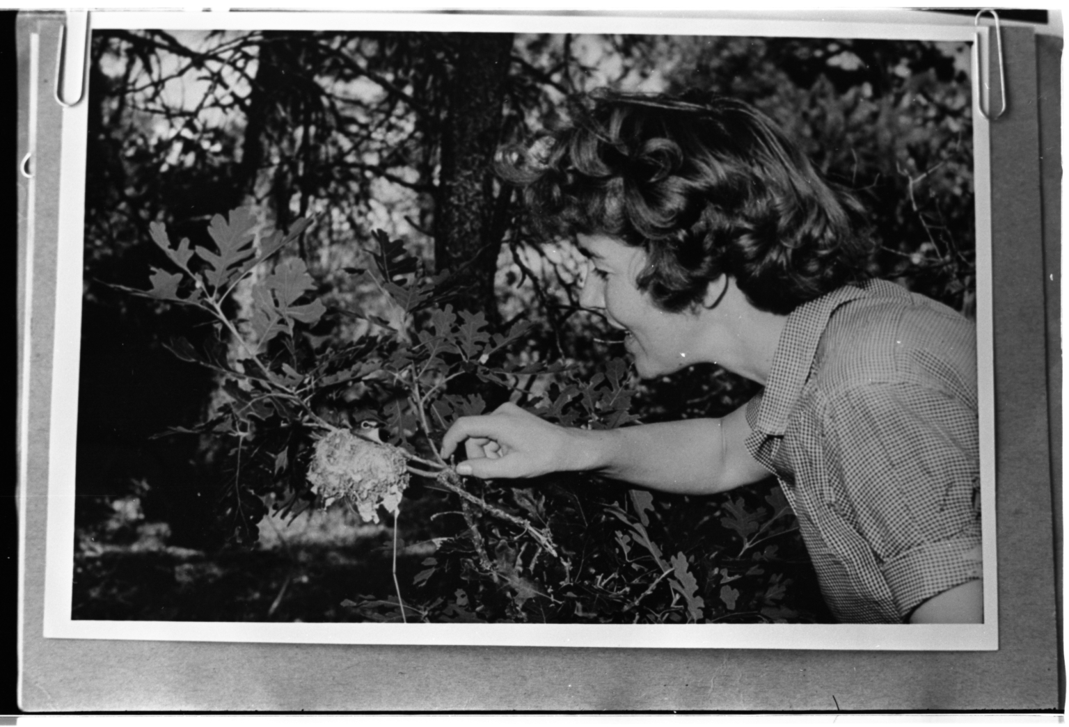 Patricia Bailey Witherspoon with Hummingbird