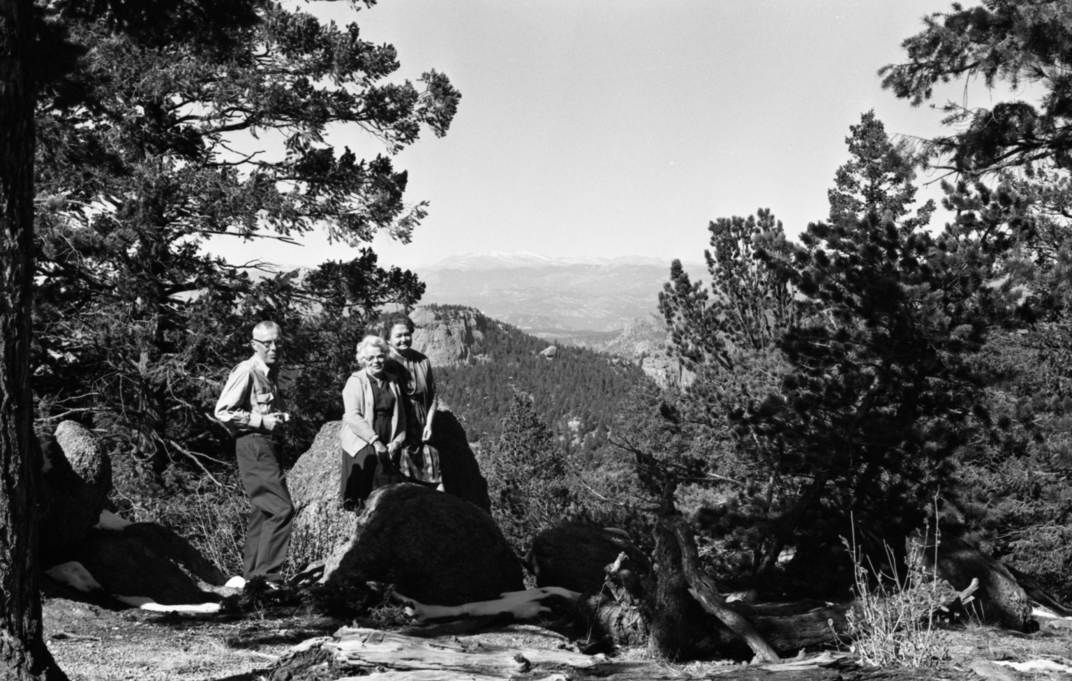 People with Pine Trees