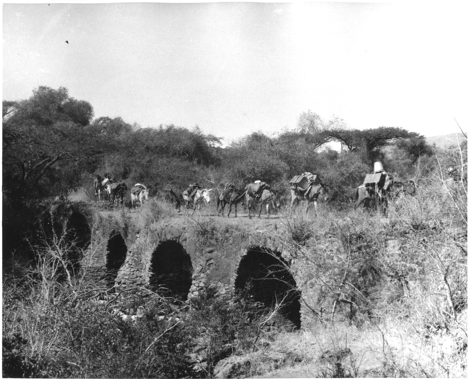 Bridge near Gondar
