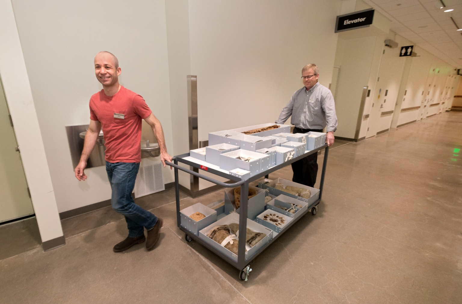 Anthropology curators move the collection