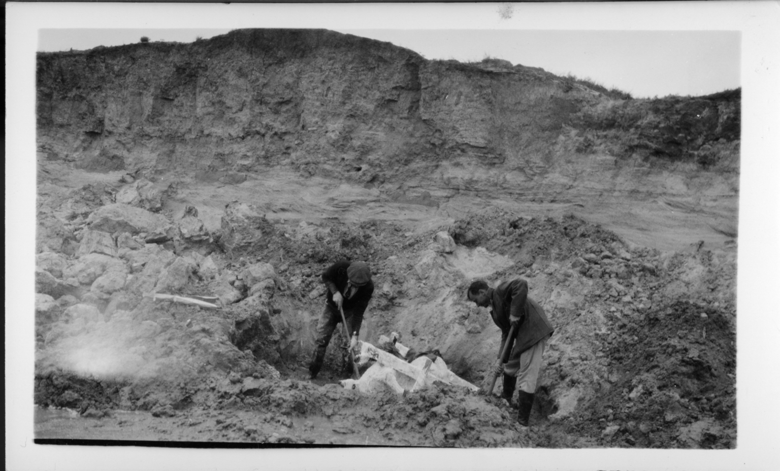 Digging for the Skull