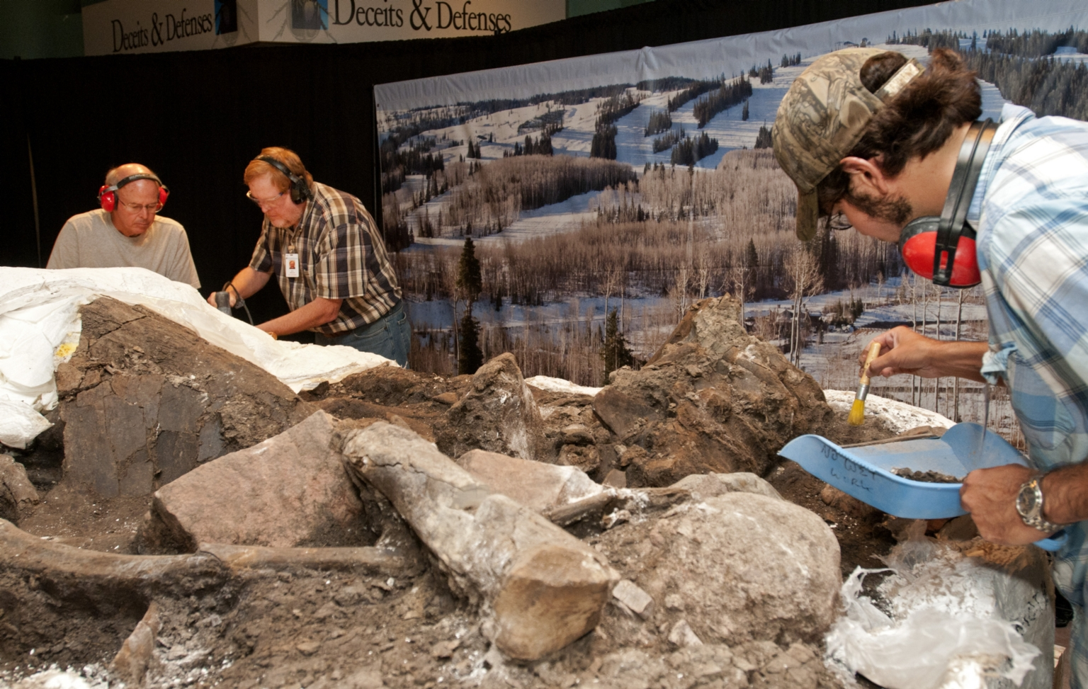 Working on Mammoth in Pop-up Exhibit